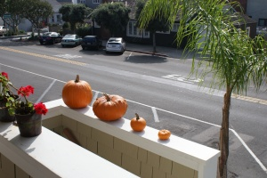 pumpkins, arrangement